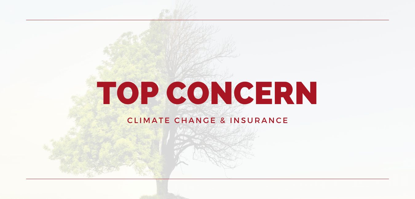 Climate-Change-Ranks-as-Top-Concern-for-Insurers-Replacing-Pandemic-min
